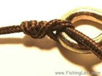 Regular Classic Clinch Knot, aka the Fisherman's Knot