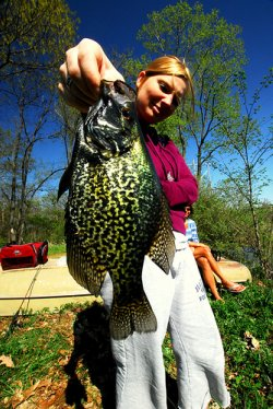 Big Crappie Fishing Caught by Pretty Woman