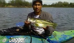 Largemouth Bass Caught Kayak Fishing