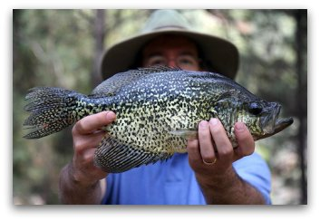 crappie fishing tips big slab man