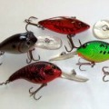 Crankbait Fishing Lures for Best Baits for Bass