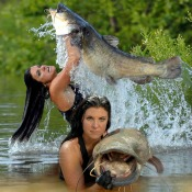 Learn About Catfish Noodling