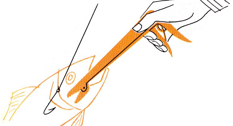 Fishing Hook Removal Drawing