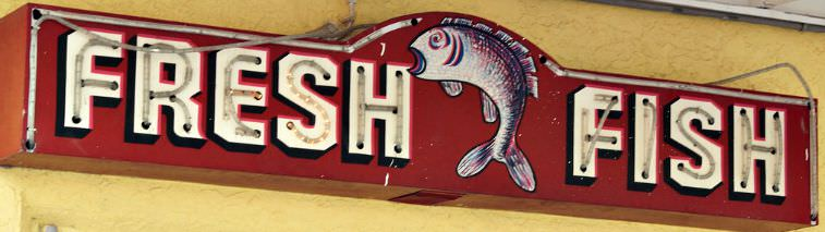 Red Neon Lighted Fresh Fish Sign