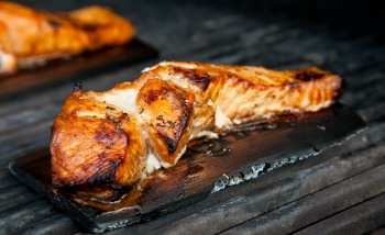 mango hickory grill planked salmon