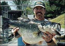 Top 10 world record largemouth bass Mike Long at Dixon Lake, number 9