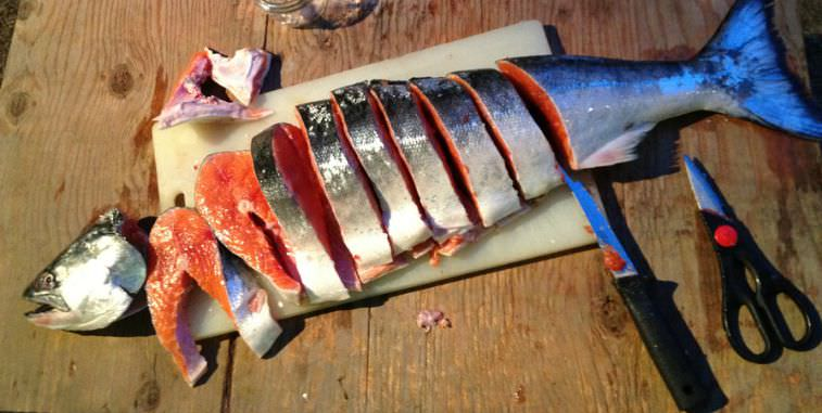 Chinook Salmon sliced up into steaks.