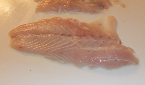 striped bass fillets cleaned and ready to cook