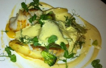 Hollandaise sauce over white fish