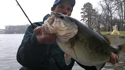 Chatterbait Bass In Spring