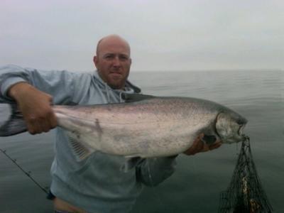 Sekiu, Washington - Wild Caught Chinook Salmon