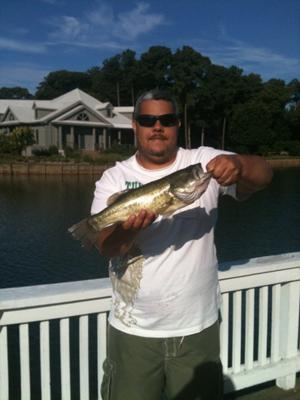 Catching Largemouth Bass In Memory Of Grandfather