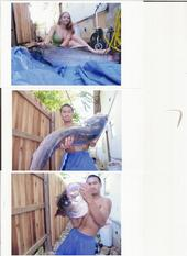 Striped Bass Fishing Pictures