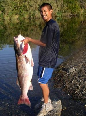 Big Time Striped Bass Fishing Picture
