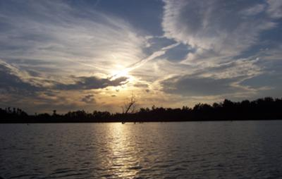 See beautiful sunrises.....