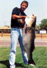 world record striped bass freshwater striper Hank Ferguson