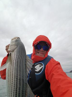 Winter Striped Bass