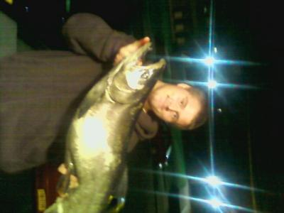 King Salmon - Olcott Beach, NY - 22 1/2 Pounds