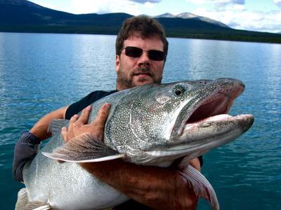41 Pound Tagish Lake Trout