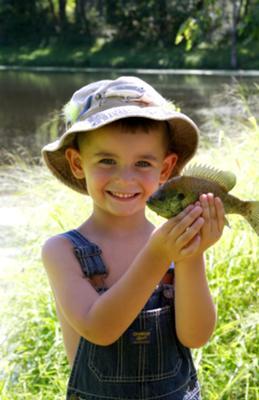 So proud of his fish! - Bluegill