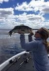 Frog Fishing On The California Delta