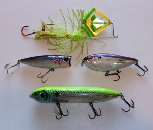 Top Water Plugs for Largemouth Bass Techniques