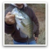 Click Here for Crappie Pictures