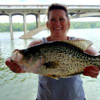How To Catch Big Crappie