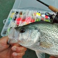 Crappie Fishing Lures