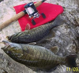 2 Smallmouth Bass Caught at a Dam in Kentucky while fishing for stripers