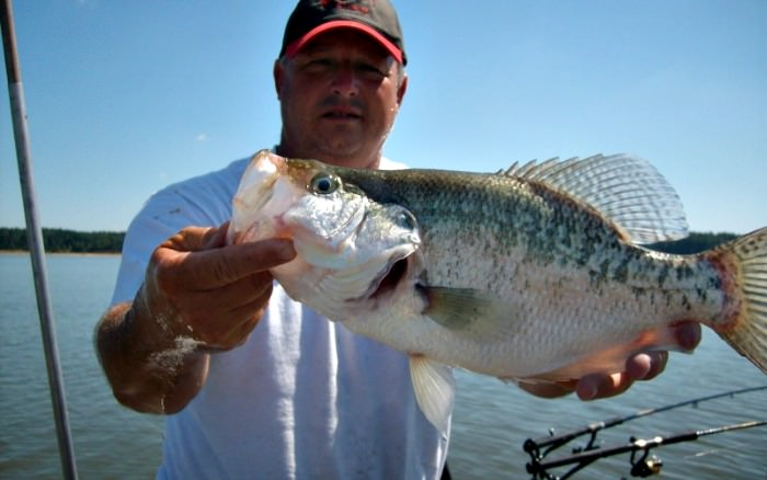 man with big crappie on a boat