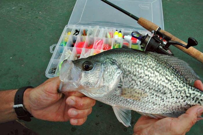 Picture of a Crappie caught and a crappie lure fishing kit with a rod and reel.