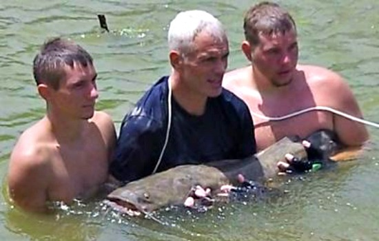 Jeremy Wade Catfish Noodling with Adrenaline Rush Noodling