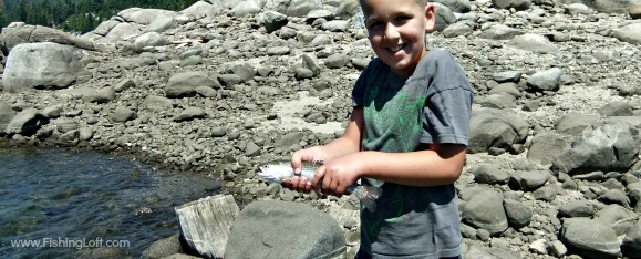 Sugar Pine Campgrounds Rainbow Trout