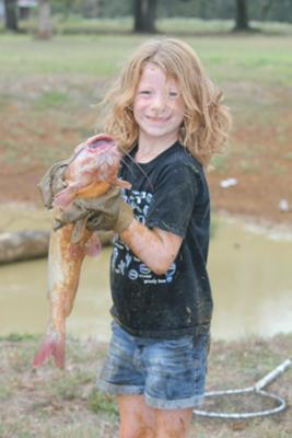 Pond Catfish Caught by Hand Fishing