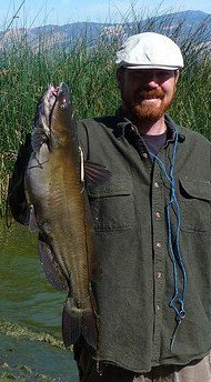 Catfish Pictures Channel Catfish Photo