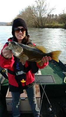 Feisty Smallmouth Bass