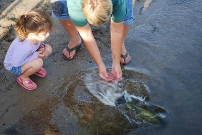 Releasing the Largemouth Bass