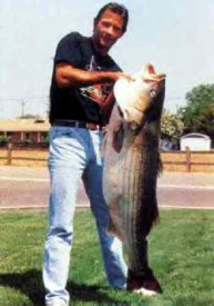 world record striped bass freshwater striper Hank Ferguson
