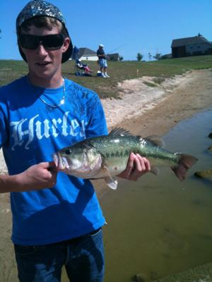 6.5 Pound Largemouth Bass from the pond