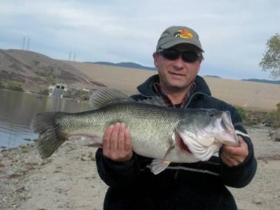 Largemouth Bass took by a jig.