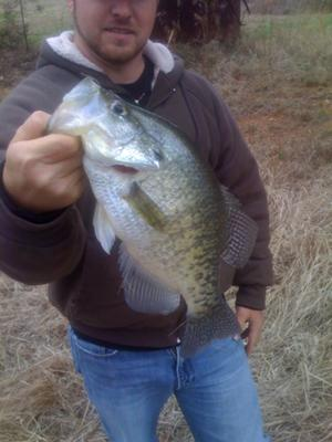 4.01 ounce North Carolina White Crappie