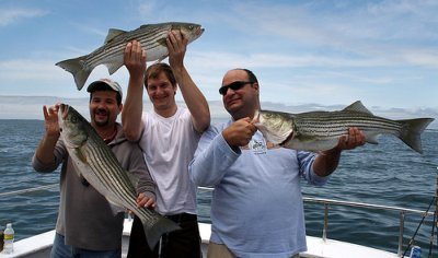 True answer nc fresh water striped bass fishing